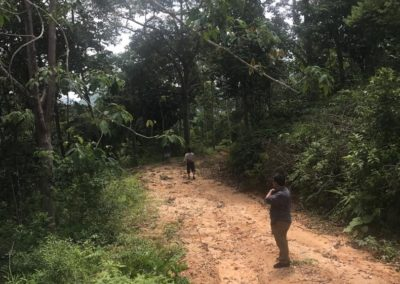 projek kebun durian (4)