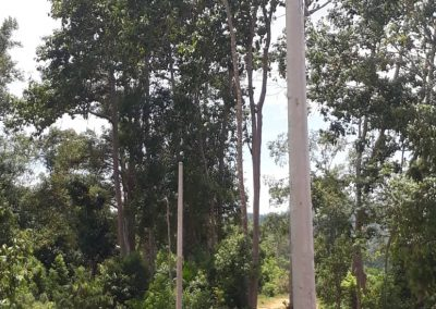 news okt 2020 - durian farm 8